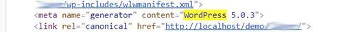 WP Generator Meta Tag & Version Info